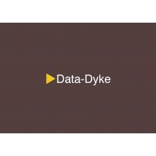 FemPK_065_Data-Dyke.jpg